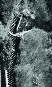 Des escaliers montant du sol...